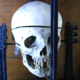 Measuring device for skull