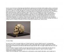 Due crani (finora) diversamente trattati