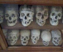 Italia degli orrori. Il cranio di Villella resta al museo Lombroso. Quando un errore vale più della giustizia e del rispetto dell'uomo
